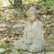 buddha on the trail